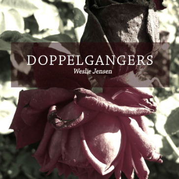 Doppelgangers Live Cover